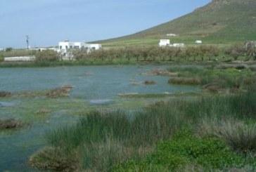 Υγρότοποι: μια ιστορία για το νησί μου