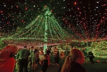 Το σπίτι με τα 502.162 χριστουγεννιάτικα φωτάκια στην Αυστραλία