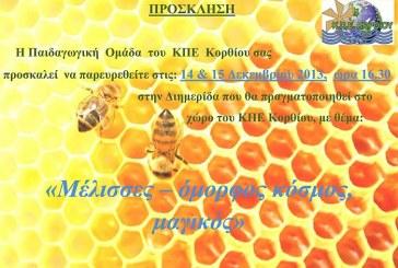 Διημερίδα από το ΚΠΕ Κορθίου: «Μέλισσες-όμορφος κόσμος, μαγικός»