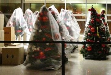 Αμερικανός πάστορας έχει στο σπίτι του 111 χριστουγεννιάτικα δέντρα
