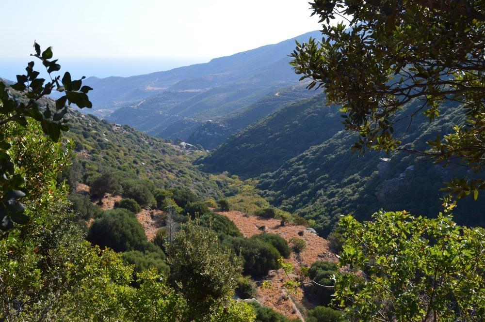 path-and-views-3