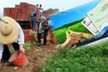 Όλα όσα πρέπει να γνωρίζετε για τις δηλώσεις των αγροτών