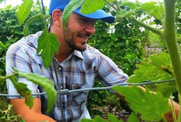 Ως 250 στρέμματα δικαιώματα σε αγρότες νεαρής ηλικίας