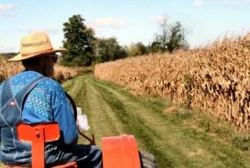 Όλες οι διαδικασίες & οι προϋποθέσεις για να γίνει κάποιος νέος αγρότης