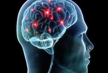 Αμερικανοί επιστήμονες: Τα φρούτα καθοριστικός παράγοντας για την ανάπτυξη του εγκεφάλου