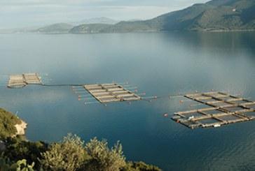 Στη Βουλή οι καθυστερήσεις στην προκήρυξη προγραμμάτων του Επιχειρησιακού Προγράμματος Αλιείας και Θάλασσας 2014-2020