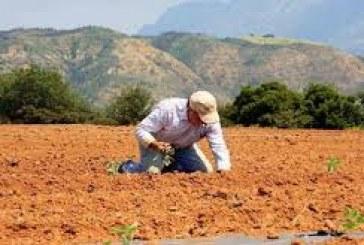 Αγροτικά: Επαναφορά σε ειδικό καθεστώς χωρίς δηλώσεις ΦΠΑ