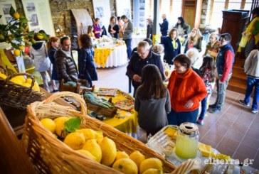 Η γιορτή Λεμονιού… που έγινε θεσμός στην Άνδρο το Μεγάλο Σάββατο!