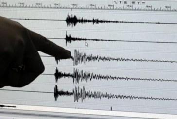 Μαθητές μελετούν τους σεισμούς με δικούς τους σεισμογράφους
