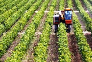 Προσωρινή λύση από το υπ. Εργασίας σε 152.000 αγρότες