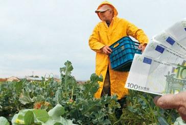 Του Λογιστή – Φοροτεχνικού Γιαννούλη Λαούδη: «Όλες οι αλλαγές για τους αγρότες από 01/01/2017»