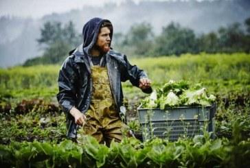 Ενισχύσεις 170 εκατ. για επενδύσεις σε γεωργικά προϊόντα -Δείτε τα προγράμματα