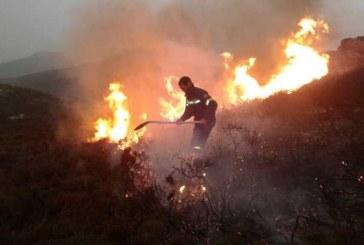 Γενική απαγόρευση της καύσης σε αγροτικές εκτάσεις