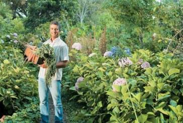 Ένταξη δικαιούχων στη βιολογική γεωργία -Νέα προκήρυξη για βιολογική κτηνοτροφία