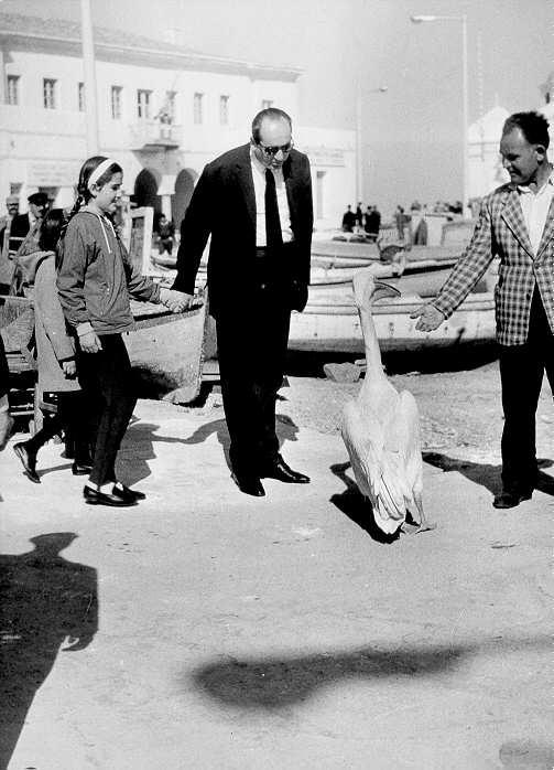mitsotakis dora mykonos 1965