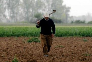 Τήρηση «Βιβλίου Ημερήσιων Δελτίων Απασχολούμενου προσωπικού σε αγροτικές εργασίες και αλιεία»