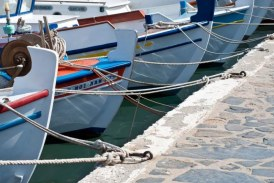 Μετά από παρέμβαση του Περιφερειάρχη, ξεκίνησε από το Υπουργείο Αγροτικής Ανάπτυξης η εξέταση των αιτήσεων θεραπείας που υπέβαλαν οι  αλιείς βιντζότρατας