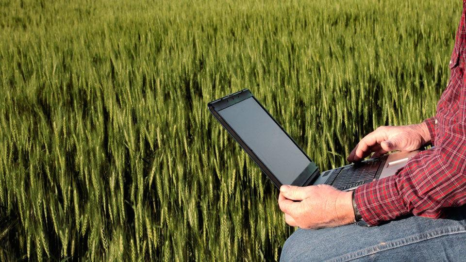 farmer_laptop