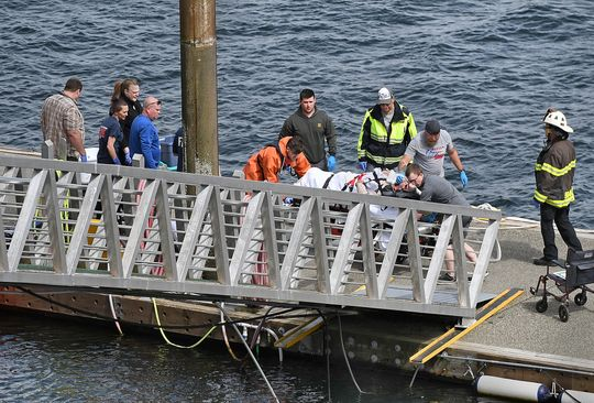 b43468cf-c91d-46cf-a4fc-4c3797934243-AP_AK_Float_Plane_Collision_Photo-1