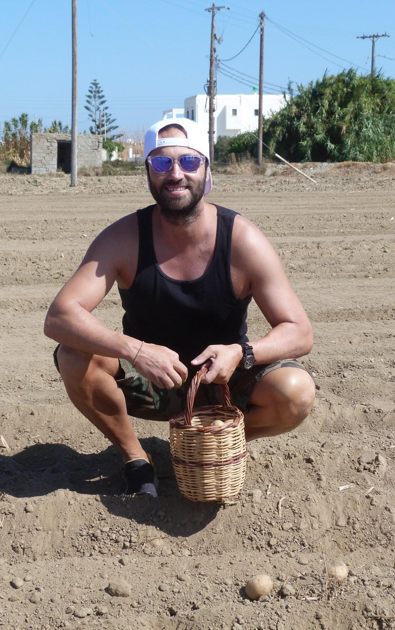 Κώστας Φραγκολιάς φύτεμα πατάτας