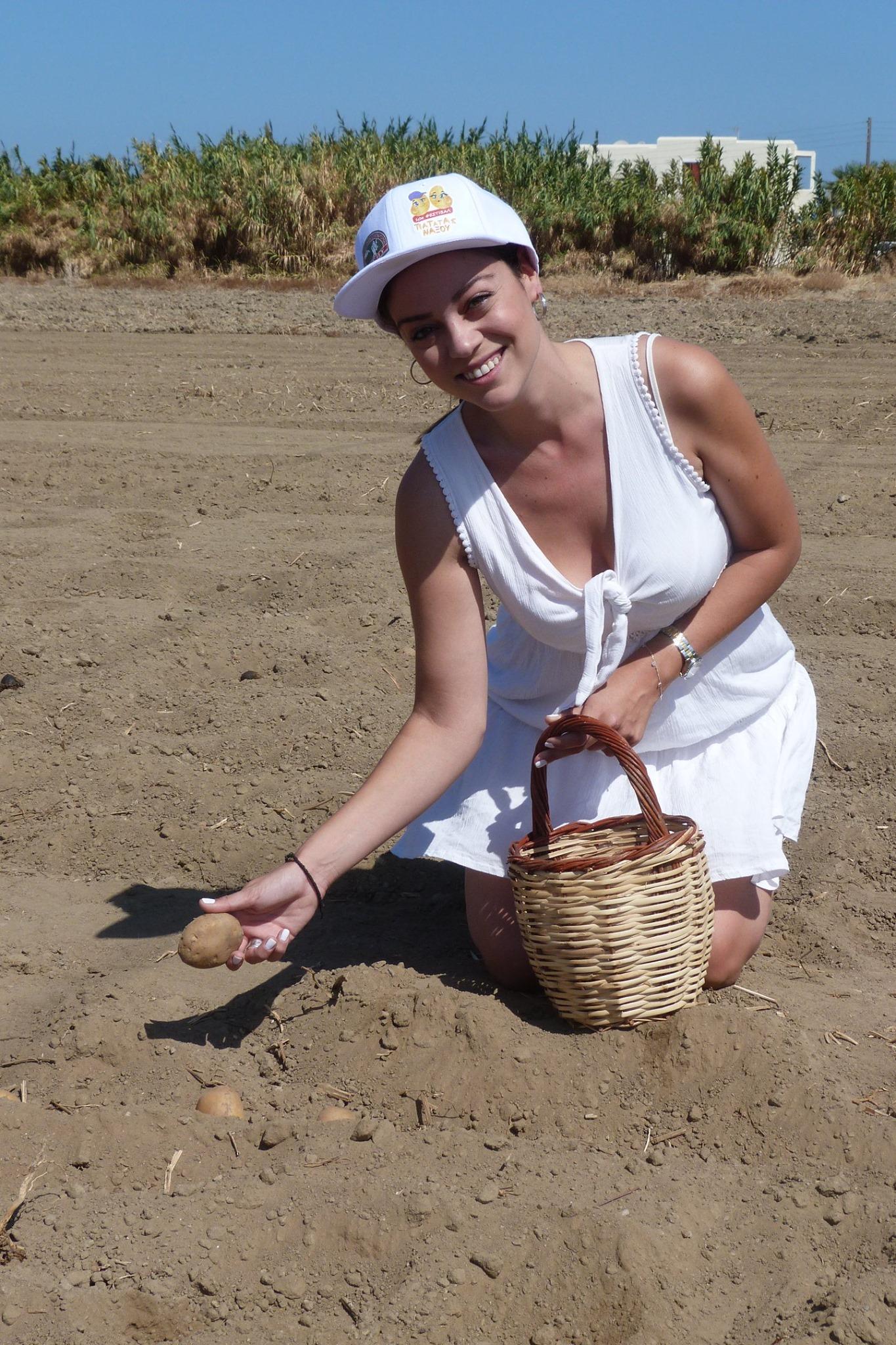 Μπάγια Αντωνοπούλου φύτεμα πατάτας