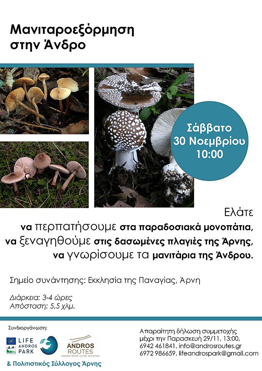 MushroomTour