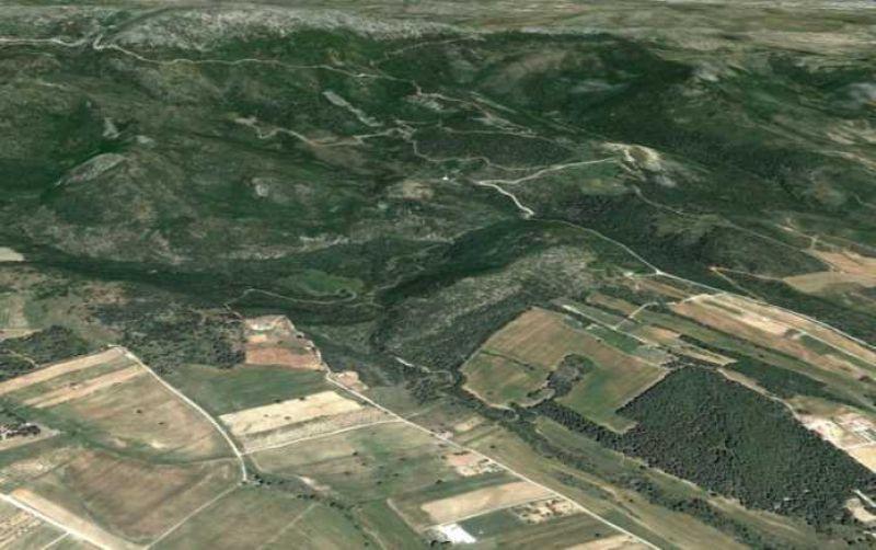 Δασικοί χάρτες: «Απεγκλωβίζονται» αγροτικές (και άλλες) εκτάσεις