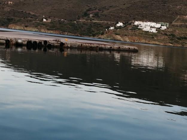Του Βασίλη Αδάμη: Ciccio το Λιμάνι πετάει…