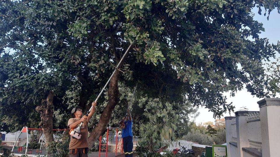 Ακόμα μία επιτυχημένη δράση από το Σύλλογο Εθελοντών Δασοπυροσβεστών Άνδρου στη Χώρα