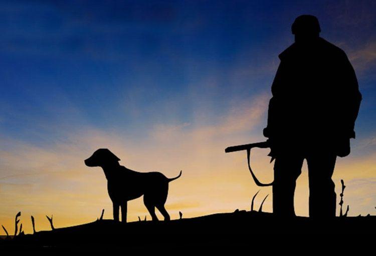 Αναφορά του Βουλευτή Κυκλάδων Φίλιππου Φόρτωμα για την απαγόρευση της κυνηγετικής δραστηριότητας