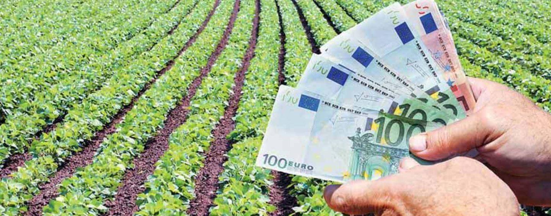 Περιφέρεια Ν. Αιγαίου: Επιστολή διαμαρτυρίας για τα δικαιολογητικά αποζημιώσεων των αγροτών