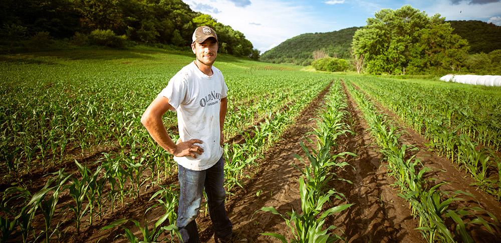 Κρατικές ενισχύσεις στον αγροτικό τομέα