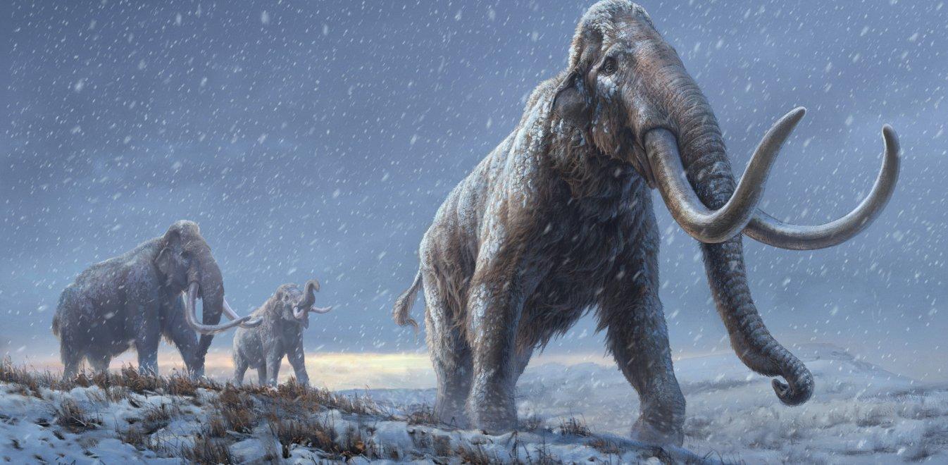 Σιβηρία: Aνακαλύφθηκε το αρχαιότερο DNA στον κόσμο σε απομεινάρια μαμούθ