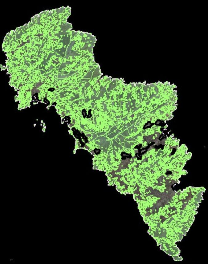 «Tο μέγα της Άνδρου Δάσος» ή αλλιώς, η χωρίς απαλλοτρίωση δήμευση του 80% της Άνδρου!