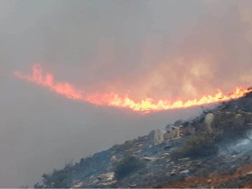 Βίντεο από τη φωτιά σε Ρεματα και Κατακοιλο