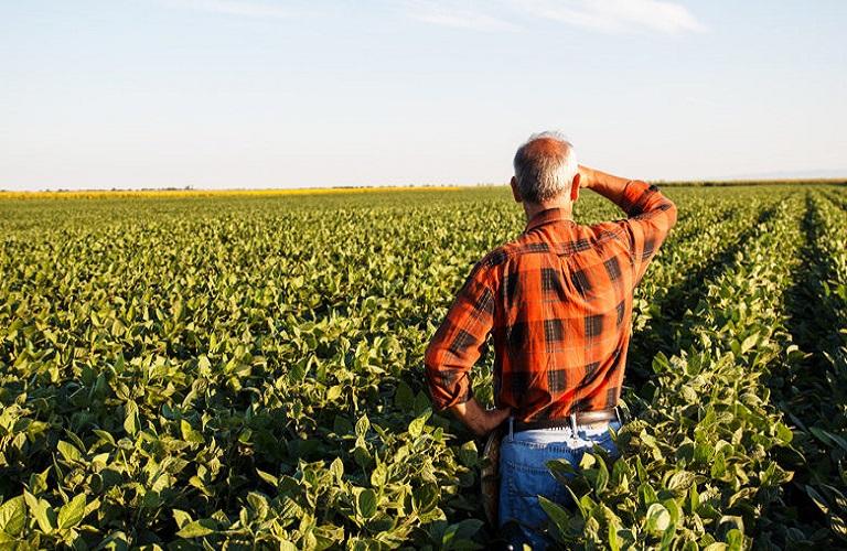 Πώς γίνεται η εγγραφή στο Μητρώο Αγροτών και Αγροτικών Εκμεταλλεύσεων