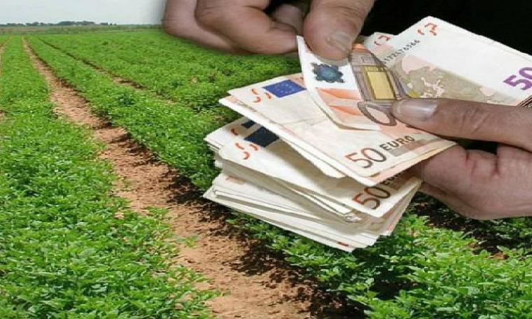 Αγροτικές επιδοτήσεις -ΟΣΔΕ 2021: Ποιοι & πώς παίρνουν χρήματα