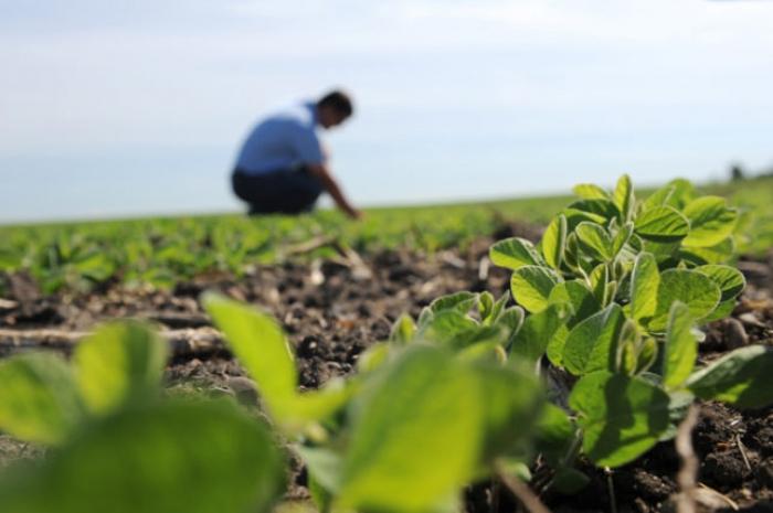 Αγροτικό τιμολόγιο-Μέχρι πότε παρατείνεται η υποβολή των δικαιολογητικών