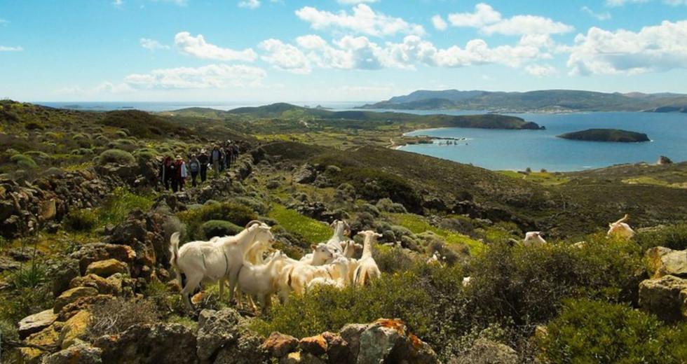 Πέντε νησιά του Αιγαίου στις 7 πιο απειλούμενες περιοχές πολιτιστικής κληρονομιάς
