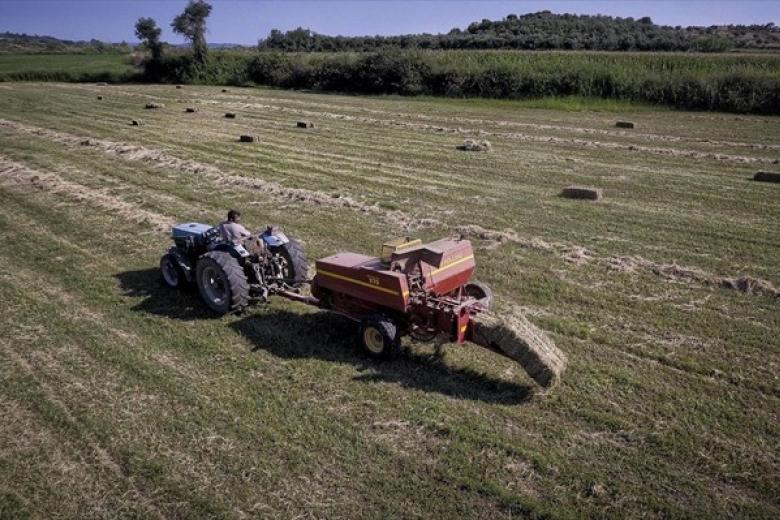 Αγρότες: Ενίσχυση 260 εκατ. ευρώ μέσω ΕΣΠΑ – Ποιους αφορά